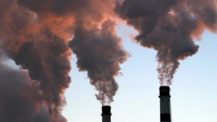 NEW DELHI, ÎNVĂLUIT DE SMOG: Nivelul de poluare depăşeşte de 20 de ori limita admisă