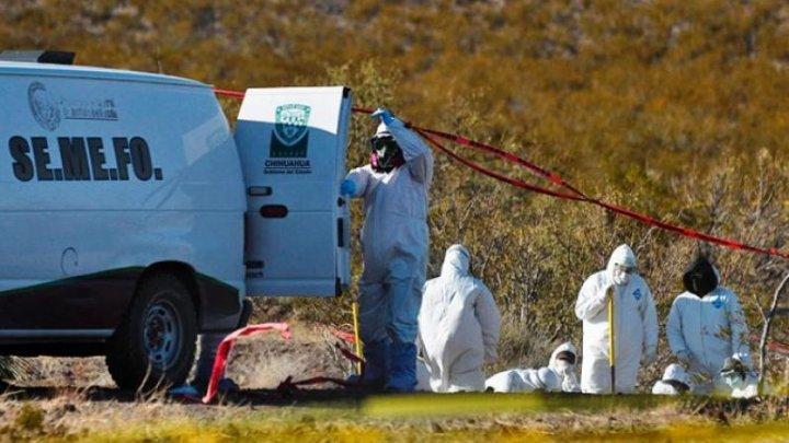 Cel puţin 166 de cadavre au fost descoperite într-o groapă comună din Mexic