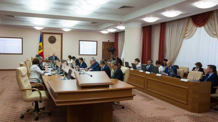 Subvenții în avans: 38 de cereri, 19 milioane de lei pentru tineri și femei care inițiază  afaceri în agricultură