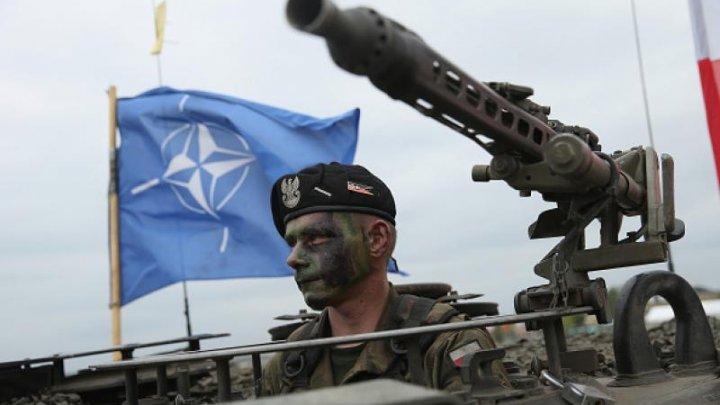 """Oficial NATO: O veche grupare teroristă revine """"pe tăcute"""", pe fondul slăbirii ISIS"""