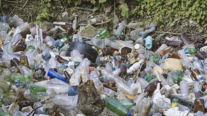 Străzile din Bălţi, din nou, pline de gunoi. DRCD nu dispune de tehnica necesară pentru a face față volumului de lucrări (VIDEO)
