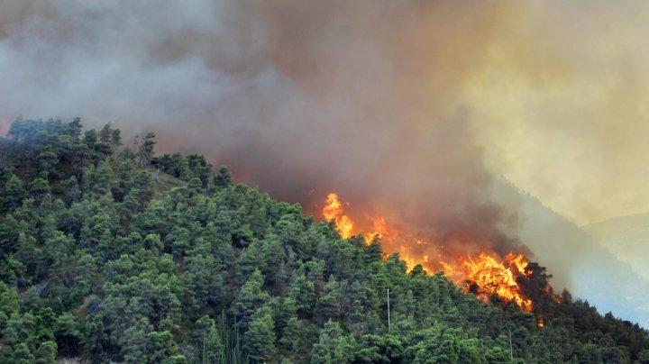 Moldovenii din Grecia, avertizaţi. Risc ridicat de incendii pe insulele elene