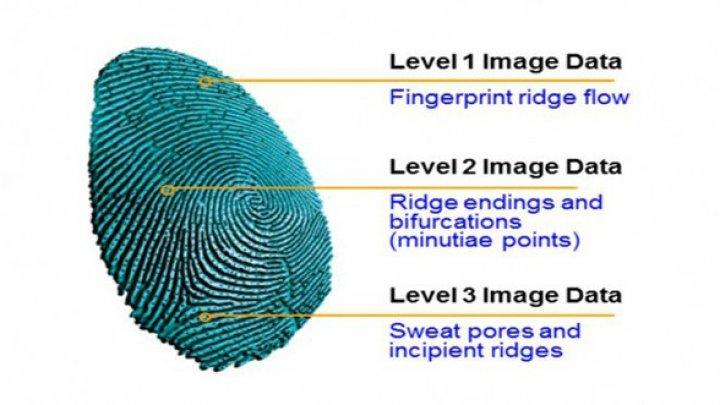 Galaxy S10, echipat cu senzor de amprente sub ecran bazat pe ultrasunete