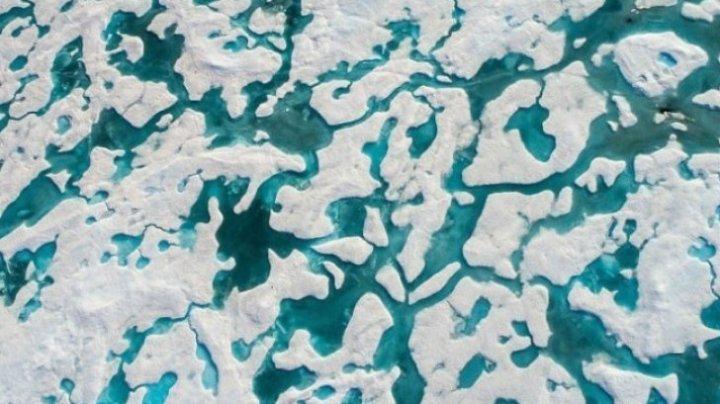 Testul care pune pe jar toate mințile luminate! Cei care văd ursul de pe aceste calote glaciare au IQ-ul să reuşească în viaţă (FOTO)