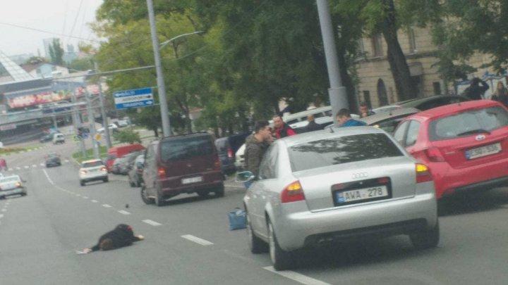 O femeie a fost lovită în plin de un automobil pe bulevardul Constantin Negruzzi (FOTO/VIDEO)