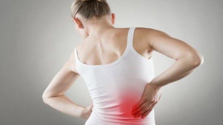 remedii pentru durerea de spate artrita genunchiului 1 și 2 grade