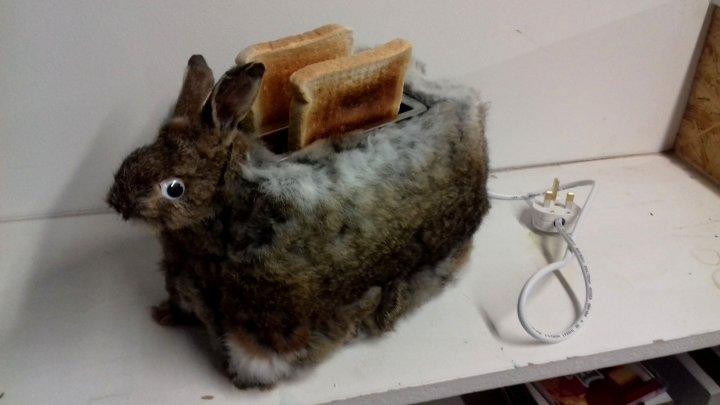 Transformă șobolanii morți în adevărată artă. Imagini incredibile cu bijuterii și obiecte casnice (FOTO)