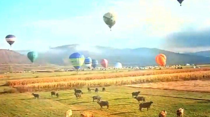 O sută de baloane cu aer cald au colorat cerul unui oraș din România, festival dedicat Centenarului Marii Unirii