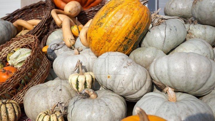Seminţele de dovleac, elixirul sănătăţii. Care sunt beneficiile și cum le consumăm