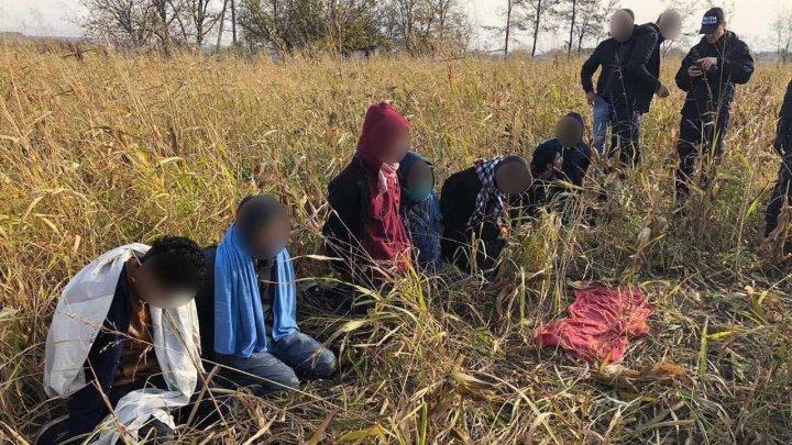 Opt bărbați din Bangladesh, printre care şi un minor, reţinuţi la frontiera moldo-română. Ce au mai depistat poliţiştii de frontieră