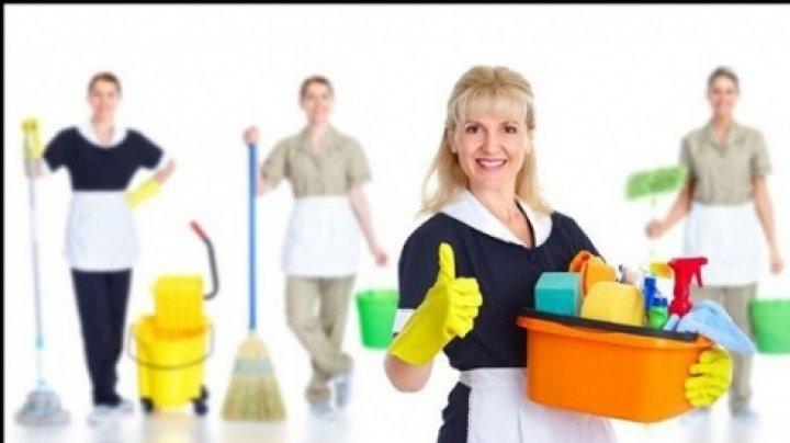 Firmele de curățenie profesională îți spun cum să faci curat mai bine