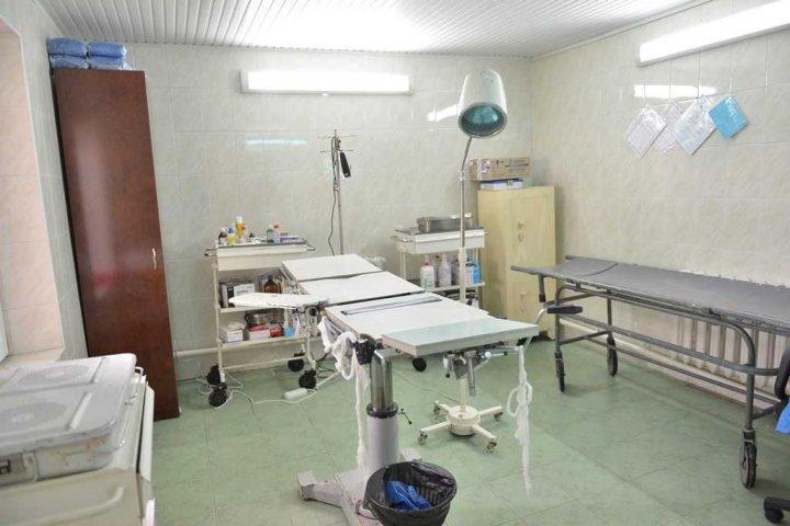 În Chișinău a fost inaugurat primul centru de îngrijire a câinilor maidanezi (FOTO)