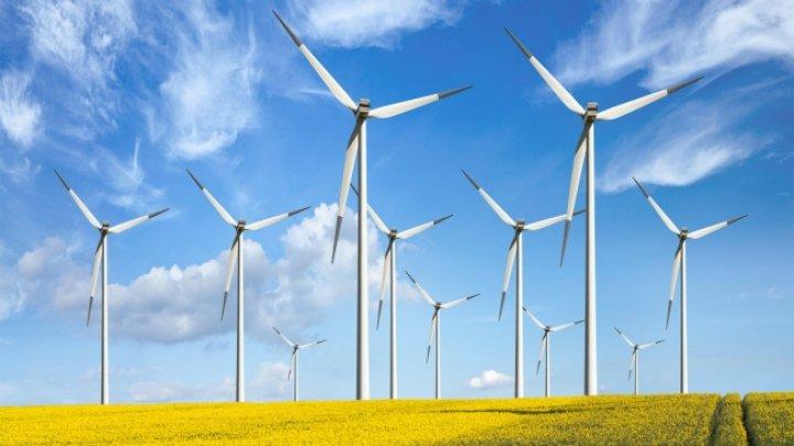 Raport: Energia regenerabilă ar putea să fie una dintre cele mai folosite în următorii cinci ani