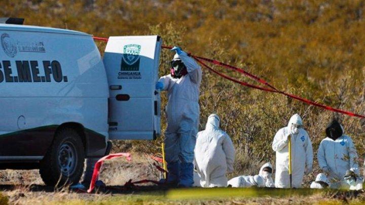 Descoperire macabră în Mexic. 19 cadavre şi două cranii au fost găsite într-o groapă comună