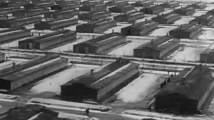 Un bărbat s-a sinucis cu un pistol din al Doilea Război Mondial