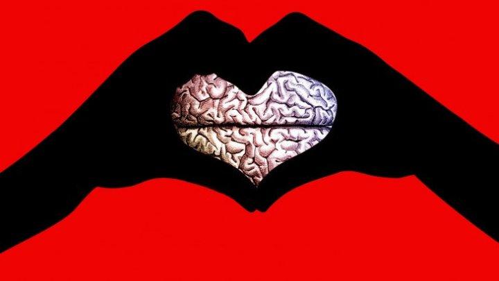 Nu o să-ți vină să crezi. Ce se întâmplă în creierul nostru atunci când ne îndrăgostim
