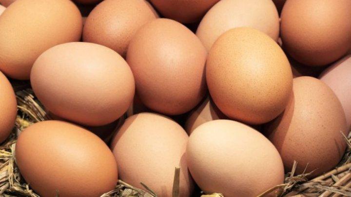 TRUCURI inteligente! Cum verifici dacă un ou este proaspăt