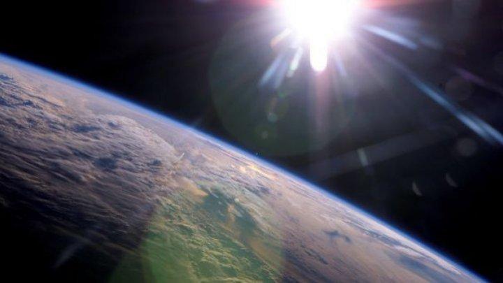 Bilanț: Terra a pierdut 60% din fauna sălbatică în 44 de ani