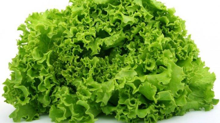 Nu o să mai mănânci niciodată! Adevărul despre salata creaţă
