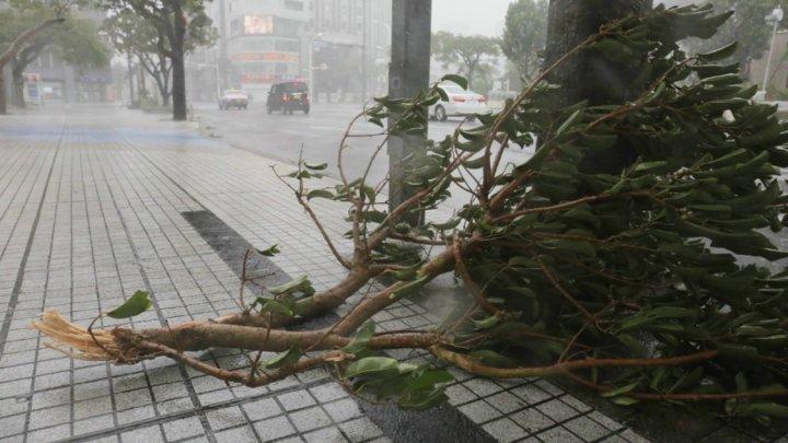 Japonia: Cel puţin doi morţi şi peste 130 de oameni răniţi în urma taifunului Trami