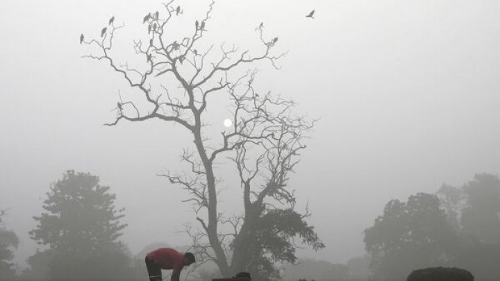 DATE ÎNGRIJORĂTOARE: Poluarea aerului continuă să se înrăutăţească în capitala Indiei New Delhi