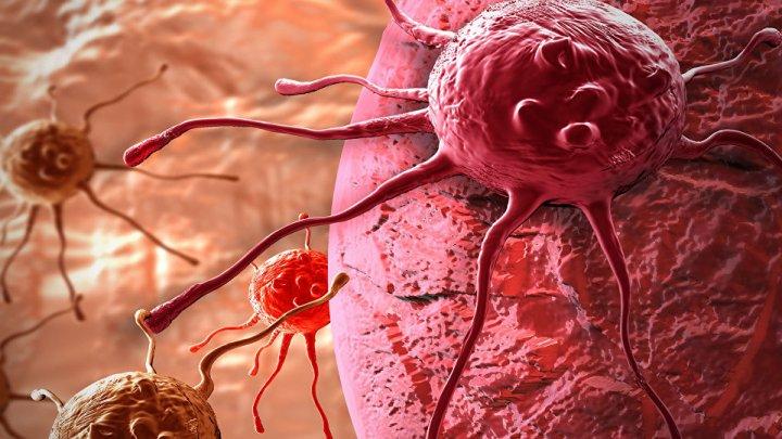 Cancerul în stadii avansate ar putea fi tratat. Bacteria ce provoacă cangrene ar putea fi eficientă