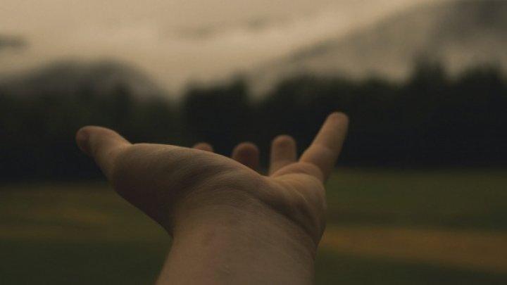 Liniile de la încheietura mâinii îți pot dezvălui ceea ce îți rezervă viitorul