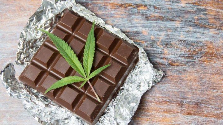 Doi poliţişti din Canada, concediaţi după ce au mâncat ciocolată cu marijuana, furată în timpul unei percheziţii