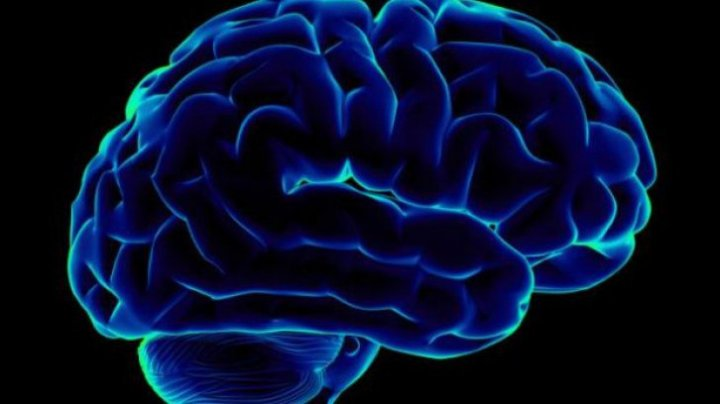 Adevăruri FASCINANTE despre creierul tău pe care nu ți le spune nimeni