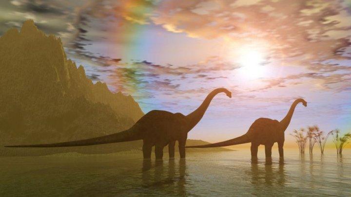 O nouă specie de dinozaur, descoperită în Argentina