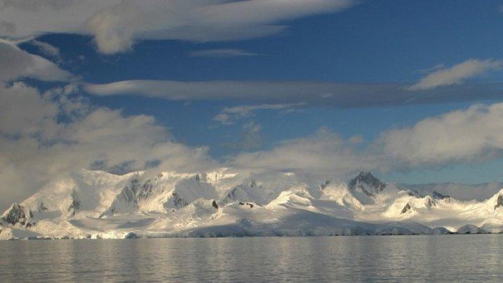 Efectele dramatice ale încălzirii globale. Ce ar putea duce la dispariţia vieţii pe Pământ