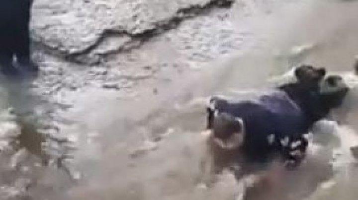 E INUMAN! Un copil cu paralizie cerebrală A FOST FĂCUT PUNTE de niște elevi pentru a traversa un râu (VIDEO)