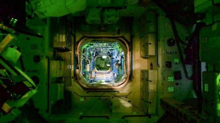 O bacterie rezistentă la antibiotice, descoperită la bordul Staţiei Spaţiale Internaţionale