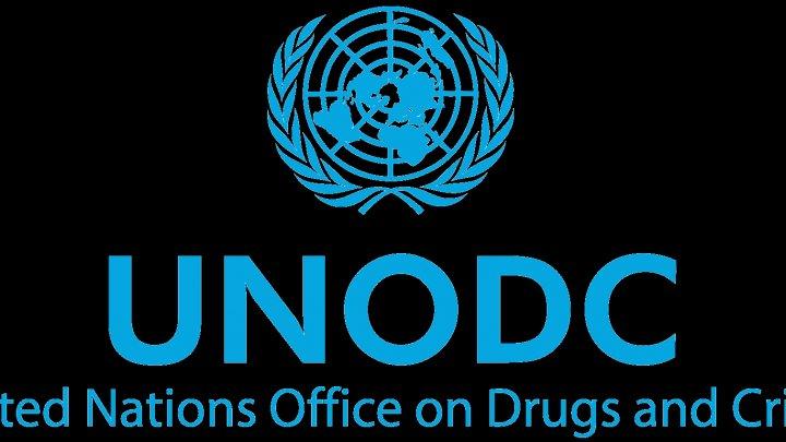 UNODC: Producţia de opiu în Afganistan a scăzut cu 29% în 2018