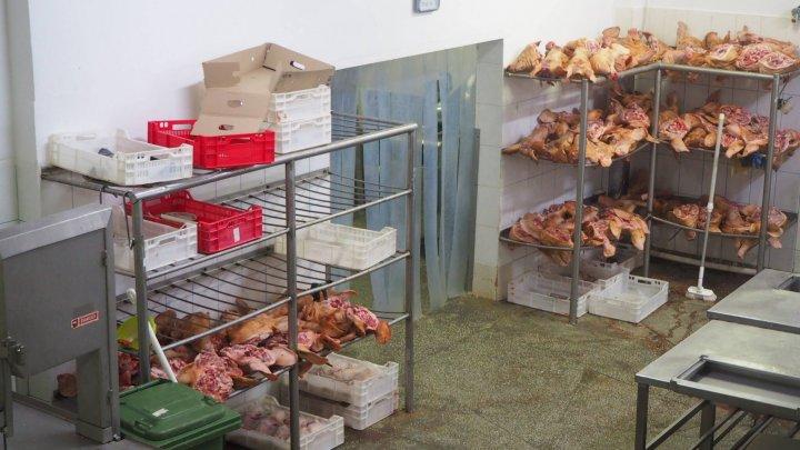 Carne păstrată în condiţii oribile. Urma să ajungă pe mesele oamenilor (VIDEO/FOTO)