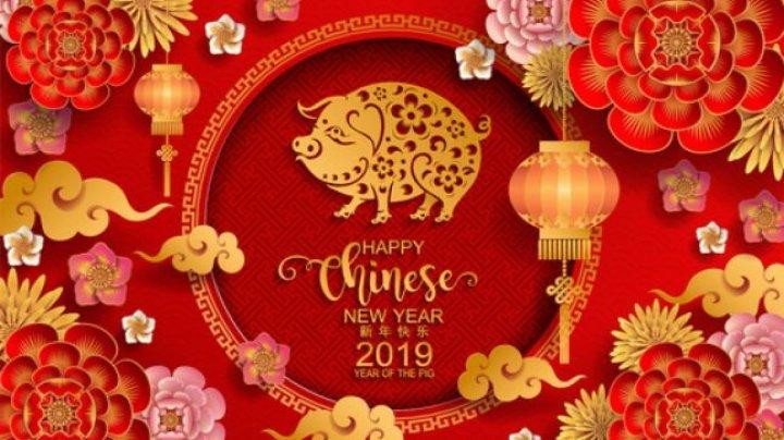 Zodiac Chinezesc 2019: Oportunităţi şi schimbări importante pentru toţi nativii