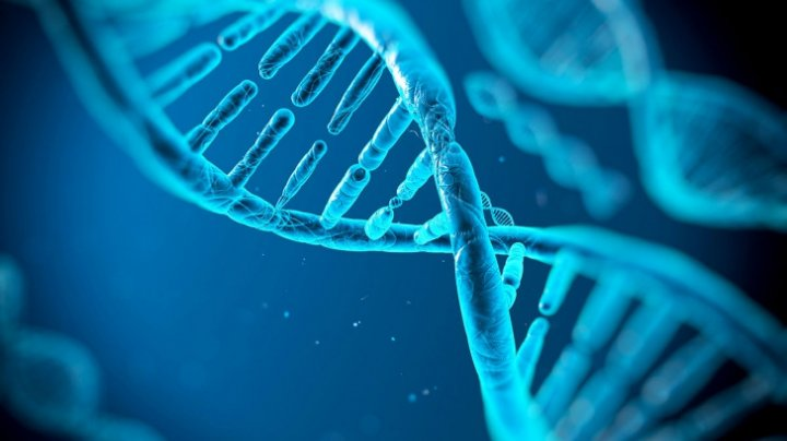 ADN-ul uman se poate schimba. Detaliul şocant descoperit de cercetători