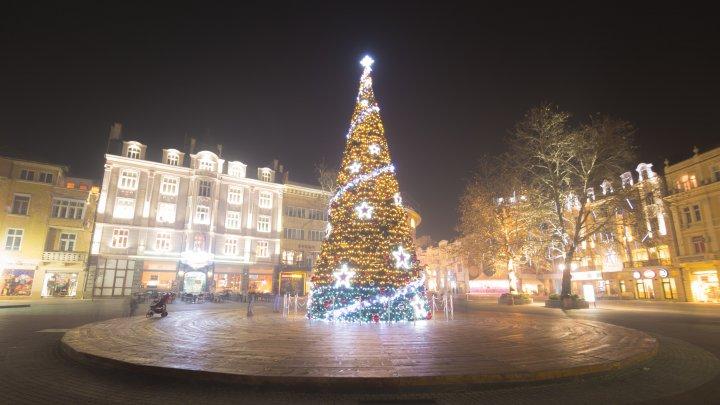 Cel mai scump pom de Crăciun din Europa costă 2,3 milioane de euro (VIDEO)