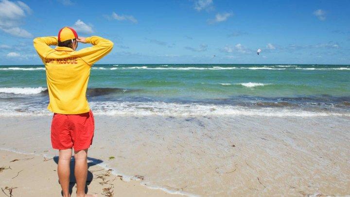 Descoperire stranie pe o plajă din Australia: Pare a fi un extraterestru! (FOTO)