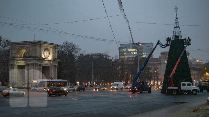 Pregătiri pe ultima sută de metri. Cum arată pomul de Crăciun, instalat în PMAN (FOTOREPORT)