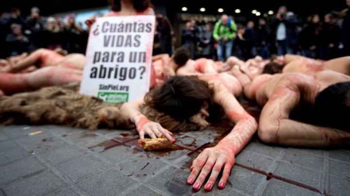 GOI PUŞCĂ pentru vieţile animalelor. Un protest extrem a avut loc în Spania