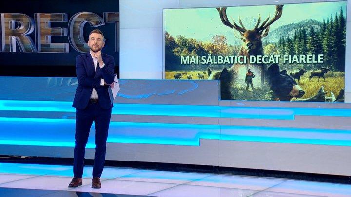 IMPACT: Cât de uşor poţi obţine o licenţă specială pentru vânătoare în Republica Moldova (VIDEO)