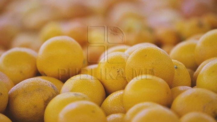 Idei ingenioase pentru a folosi cojile de portocale