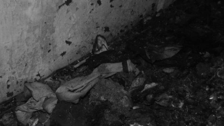 Trei adolescenți, tăiați cu toporul și apoi incendiați. MĂRTURII ŞOCANTE privind răfuiala sângeroasă de la Mereșeni, Hâncești (VIDEO)