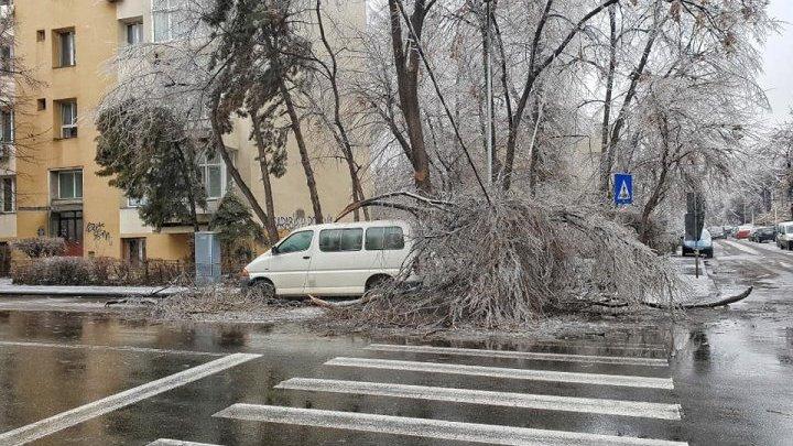 România, calamitată de ploaia înghețată. Mii de copaci căzuți pe străzi, sute de mașini avariate