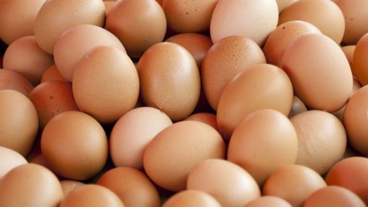 Substanţa din centrul scandalului cu OUĂLE de găină contaminate. Ce pericole prezintă