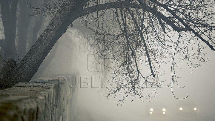 Cod Galben de ceaţă! Şoferii şi pietonii, îndemnaţi să manifeste prudenţă maximă