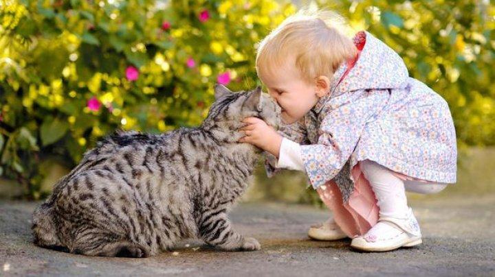 STUDIU: Importanţa animalelor de companie pentru copii