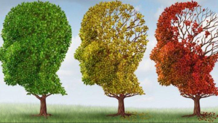 Sigur nu știai asta! Ce poate combate demența