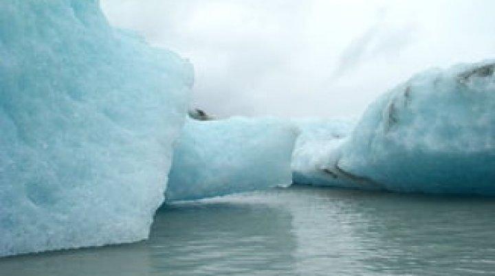 O nouă ameninţare pentru omenire: BACTERIA împotriva cărei nu există tratament, descoperită în Oceanul Arctic